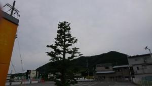 DSC_2836
